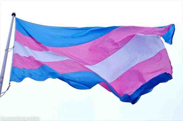 web17-transgenderflag3-1160x768
